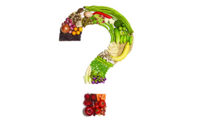 Comparing Current Common Diets