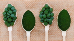 Chlorella powder and chlorella tablets on silver spoons