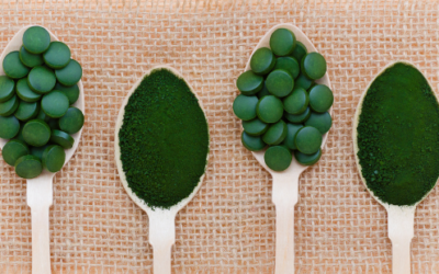 What is Chlorella?