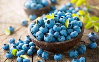Top 5 Foods to Boost Brain Power